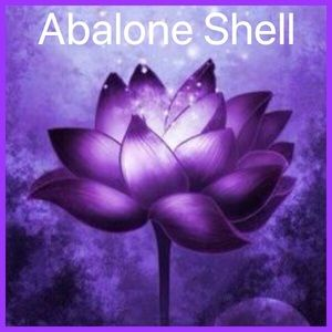 Jewelry - Abalone Shell Jewelry
